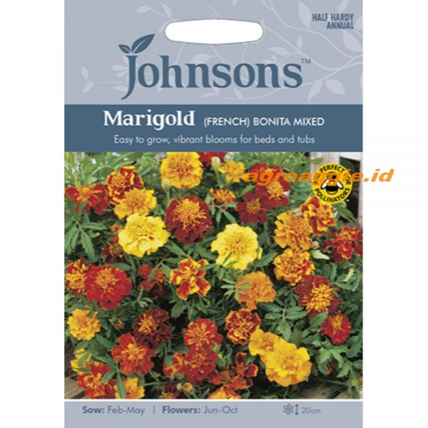 121143 Marigold French Bonita Mixed