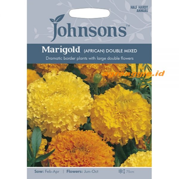121180 Marigold African Double Mixed