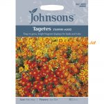 121261 Tagetes Starfire Mixed