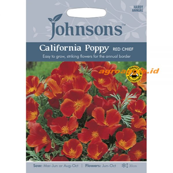121368 California Poppy Red Chief