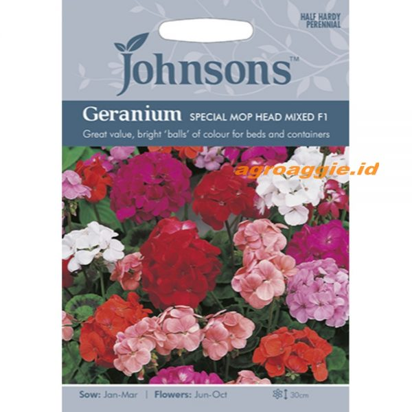 121370 Geranium Special Mop Head Mixed F1