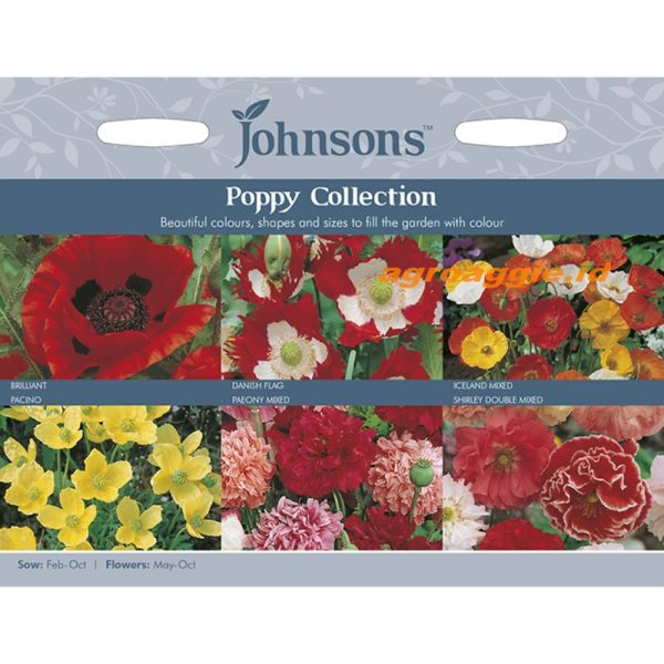 123344 Poppies Collection