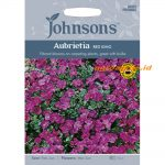 123364 Aubretia Red King