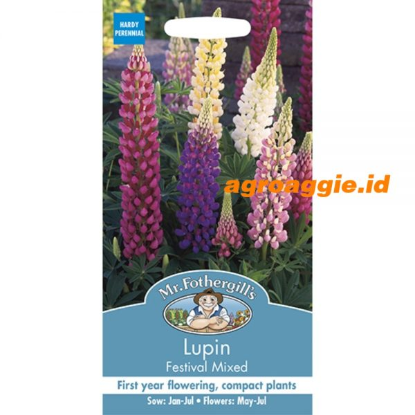 123757 Lupin Festival Mixed