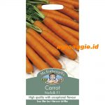 123772 Carrot Norfolk F1