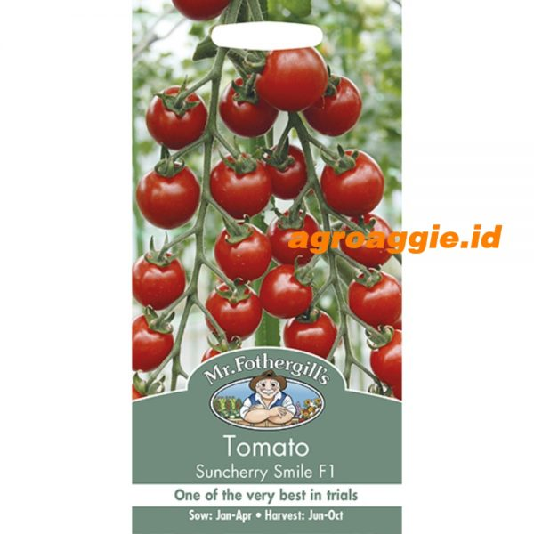 123778 Tomato Suncherry Smile F1