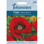 126237 Poppy Oriental Brilliant